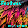 Bruce Beer Drive Releases
