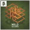WRLD // Triumph