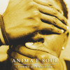 ANIMA E SOUL (listen to soul listen to blues - Akuo // Mash Up )