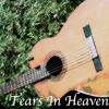Tears In Heaven(MTV Unplugged Ver.) Cover
