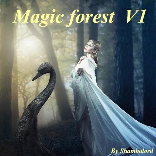 Magic forest V1