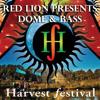 Red Lion Presents - Dome & Bass - Harvest Festival Thermodome Set 2014 - Liquid,DnB,Ragga Jungle Mix
