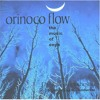 Enya - Orinoco Flow (Andy Lane Remix)