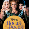 Bette Midler - Hocus Pocus OST - I Put A Spell On You (Lance Fama's Studio Version)
