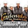 Los Cardenales De Nuevo Leon (Puros Exitos)2014 Portada del disco