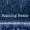 Raining Beats (Reggae-Soul-Funk-Blues) mp3