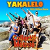 COLLECTIF METISSE - YAKALELO - WILLY WILLIAM REMIX mp3