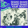 K.C. And The Sunshine Band - Shake Your Booty ( ca5ualty remix )