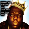 Notorious BIG - Nasty Girl (Couch Potato Deep Mix)