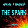 The Spark Shot Me Down (Angel P Mashup)