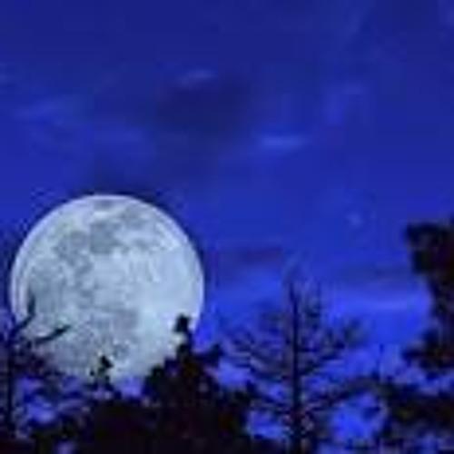 Longfellow's Night