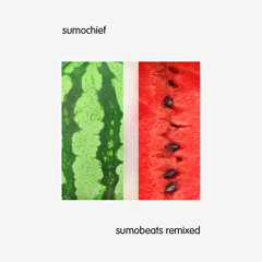 Sumochief - 1of1 (Handbook Remix)