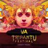 Xaman Ek / Psychotria Dreams / Released on Tripantu VA 2014
