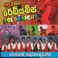 MEEGODA RADIUMS COLOR NIGHT 2014