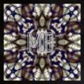 Milwaukee Banks Hazy (LUCIANBLOMKAMP remix) Artwork