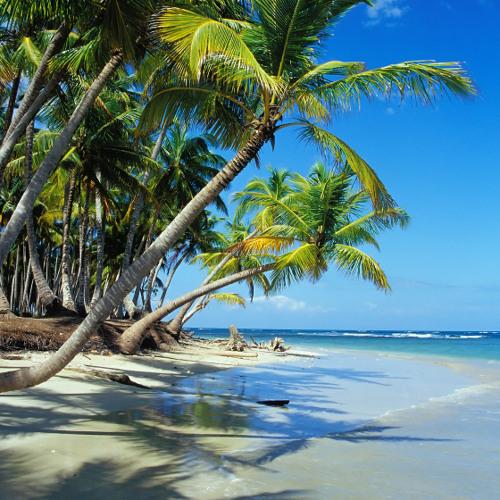 Darf man Urlaub kostenlos stornieren?