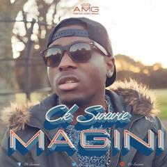 Magini