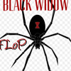 Black Widow Freestyle Prod. by The Scrin