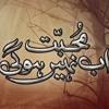 Mohabbat Ab Nahi Hogi OST Hum TV Drama