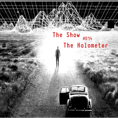 The Show #014 - The Holometer