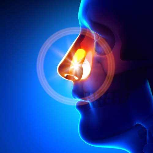 Assoc Prof Olivier Piguet discusses the sense of smell with Richard Glover on the ABC