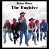 Do You Wanna Dance - Brian Moon