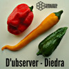 Diedra [Out 24th December 2014] by D'ubserver