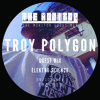 TMG 005 Troy Polygon - The Monitor Guest Mix 005