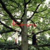 (Instrumental Cover) Kiroro - Mirai e