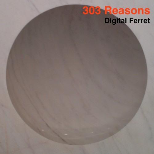 303 Reasons