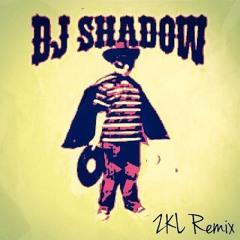 DJ Shadow - Organ Donor (ZKLHYD remix)
