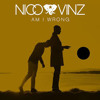 Am I Wrong- Nico&Vinz Remix By Anant