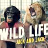 Wild Life - Jack and Jack Chords