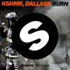 KSHMR, DallasK  - Burn (Original Mix)
