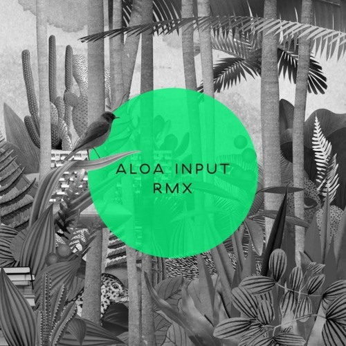 Aloa Input - Someday Morning (Ritornell Rough Mix)