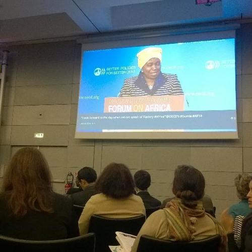 Dlamini-Zuma on Ebola response, governance in Angola & African leaders' broken promises