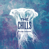 """THE CHILLS """"The BBC Sessions"""