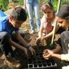 Aprender Brincando na horta da escola
