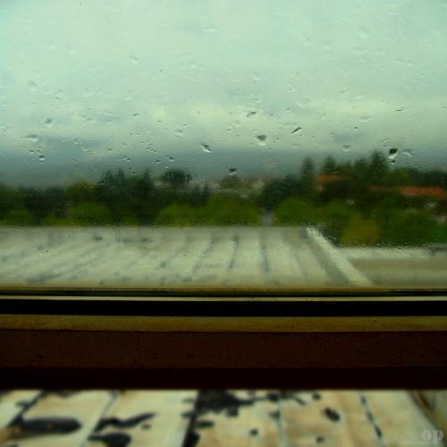 Sweater Weather (ft. Shaefri)