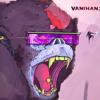 Vanihans Remix Pallaroid vs. Arise .David Guetta Ft. Skylar Grey