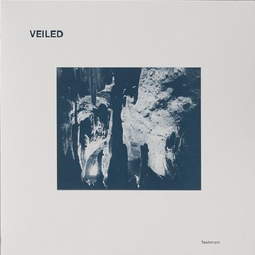 """ANM011 Veiled """"Testimoni"""" 12"""" EP"""