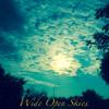 Wide Open Skies (Prod. Wonya Love)