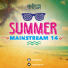Private Ryan Presents The Best Of Summer Mainstream 2014