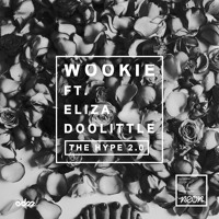 Wookie - The Hype 2.0 Ft. Eliza Doolitle (cln Remix)