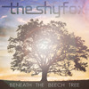 Beneath the Beech Tree (Portuguese)