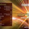 Flowers Band Stratos CD Compilation