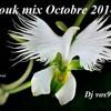 Zouk mix Octobre 2014 - Dj vos973