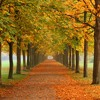 Stokka Libre Fall 2014 mix