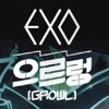 [Short COVER] EXO-K - Growl