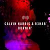 Calvin Harris & R3hab - Burnin